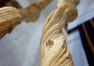 Ensemble 3 lianes de Mangrove, base Teck, détail